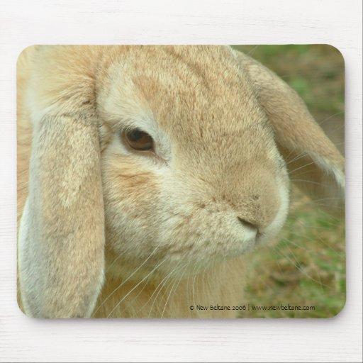 Honey,  Lop-eared Rabbit Mouse Mat