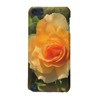 Honey Perfume Rose iPod Touch (5th Generation) Cover