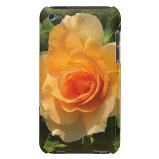 Honey Perfume Rose iPod Case iPod Touch Case