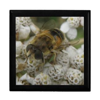 Honeybee and Flower Gift Box