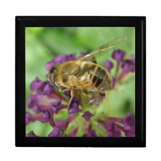 Honeybee and Purple Flowers Gift Box