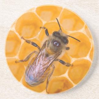 Honeybee Coaster