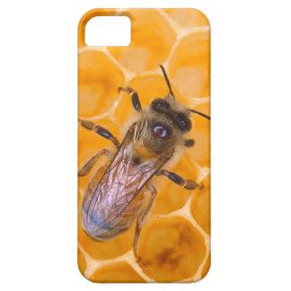 Honeybee iPhone 5 Covers