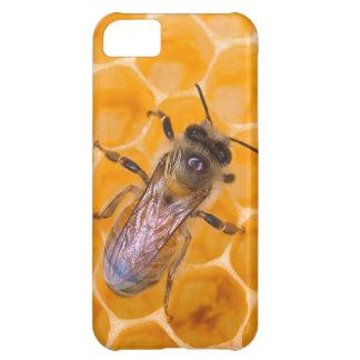 Honeybee iPhone 5C Case