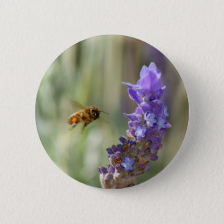 Honeybee on Lavender 6 Cm Round Badge