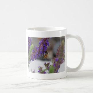 Honeybee on Salvia Basic White Mug