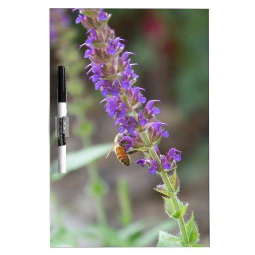 HoneyBee on Salvia Dry-Erase Whiteboards