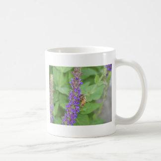 Honeybee on Salvia Officinalis Coffee Mugs