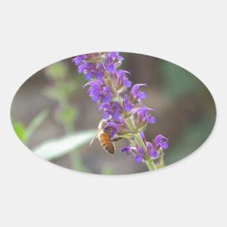 HoneyBee on Salvia Oval Sticker