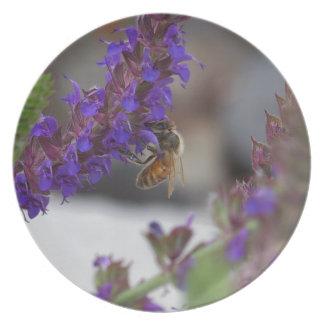 Honeybee on Salvia Dinner Plates