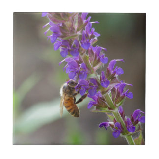 Honeybee on Salvia Small Square Tile