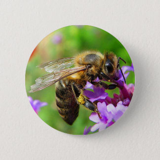 Honeybee on Verbena 6 Cm Round Badge