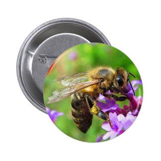 Honeybee on Verbena Pinback Buttons