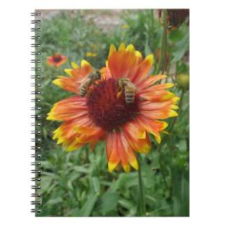 Honeybees on Blanket Flower Spiral Note Book