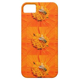 honeybees orange case case for the iPhone 5