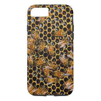 Honeycomb and Bees iPhone 7 Case