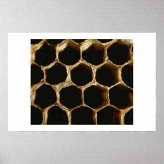 Honeycomb Poster
