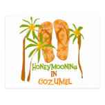 Honeymooning in Cozumel Post Card