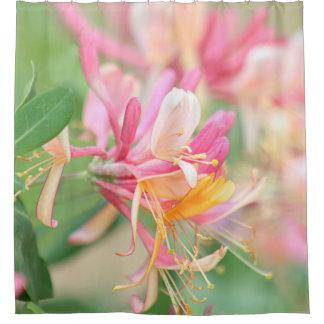 Honeysuckle flowers shower curtain