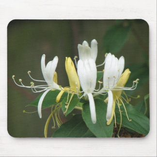 Honeysuckle Mouse Pad