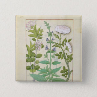 Honeysuckle, Sage and Rose 15 Cm Square Badge