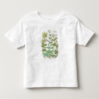 Honeysuckle, Sage and Rose Toddler T-Shirt