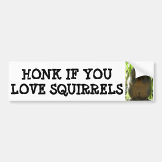 HONK IF YOU LOVE SQUIRRELS BUMPER STICKER