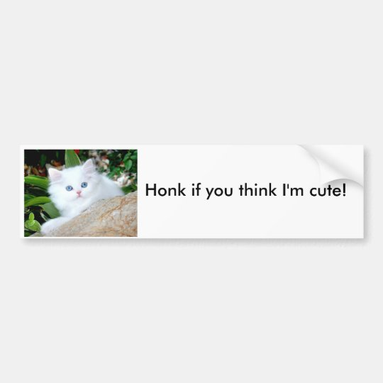 Honk if you think I'm cute! Bumper Sticker