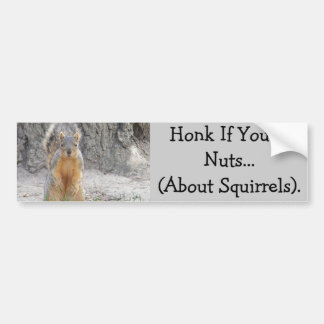 Honk If You're Nuts...About Squirrels Bumper Sticker
