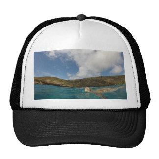 Honu- Hawaii Turtle Cap