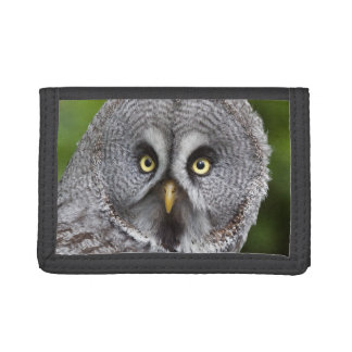 Hoo are You?  Wallet