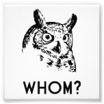 Hoo Who Whom Grammar Owl Photograph