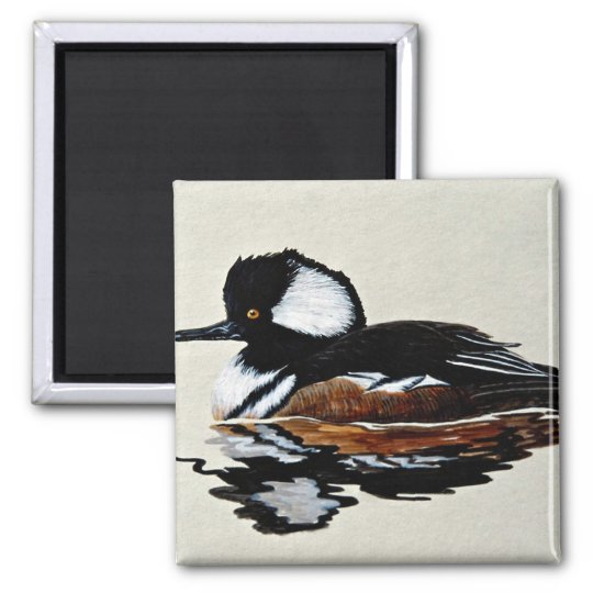 Hooded merganser square magnet
