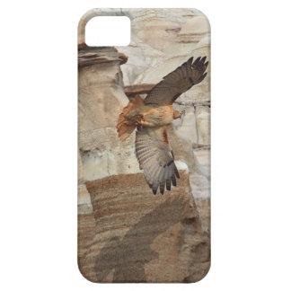 """""""Hoodoo Hawks"""" Wild-Birds Raptors iPhone Case iPhone 5 Case"""