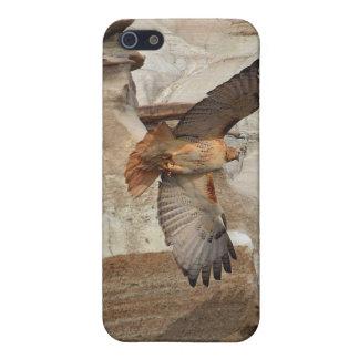 """""""Hoodoo Hawks"""" Wild-Birds Raptors iPhone Case iPhone 5 Covers"""
