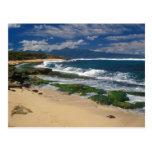 Hookipa Beach Maui Hawaii Post Card
