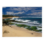 Hookipa Beach Maui Hawaii Postcard