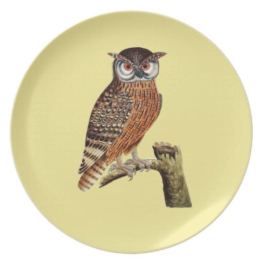 Hoot Owl Melamine Plate
