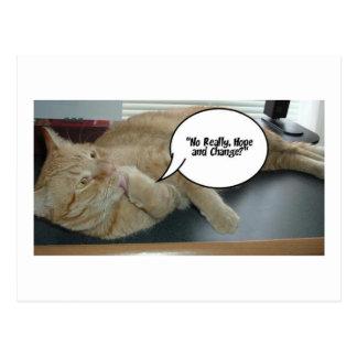 Hope and Change/Cat Humor Postcard
