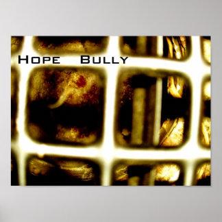 Hope Bully Album Cover Poster