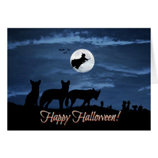 Hope it's a Wild Happy Halloween Card with Coyotes