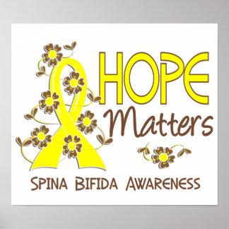 Hope Matters 3 Spina Bifida Poster