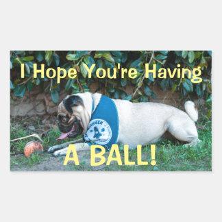 Hope You're Having A BALL! Rectangular Sticker