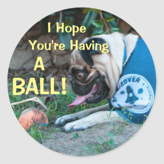 Hope You're Having A BALL! Round Sticker