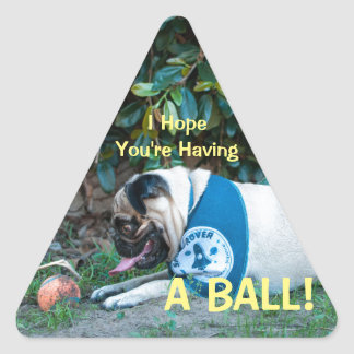 Hope You're Having A BALL! Triangle Sticker