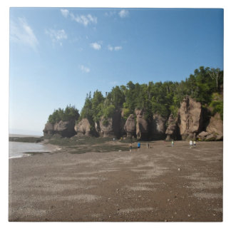 Hopewell Rocks and The Ocean Tidal Exploration Large Square Tile