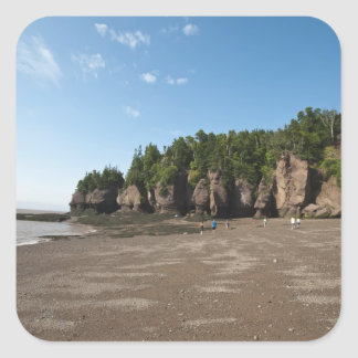 Hopewell Rocks and The Ocean Tidal Exploration Square Sticker