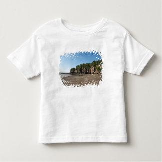 Hopewell Rocks and The Ocean Tidal Exploration Tee Shirt