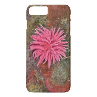 Hopkins Rose Nudibranch iPhone Case