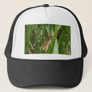 Hopper Trucker Hat